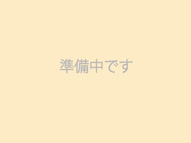 一人膳(特大 角 桜)